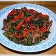 牛肉とゴーヤのトウチー炒め