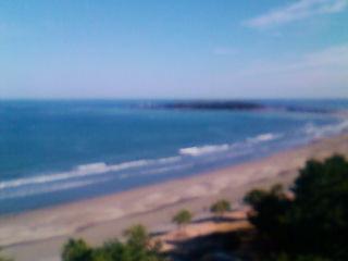 宮崎青島の海です。
