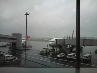 羽田空港出発ロビーから。